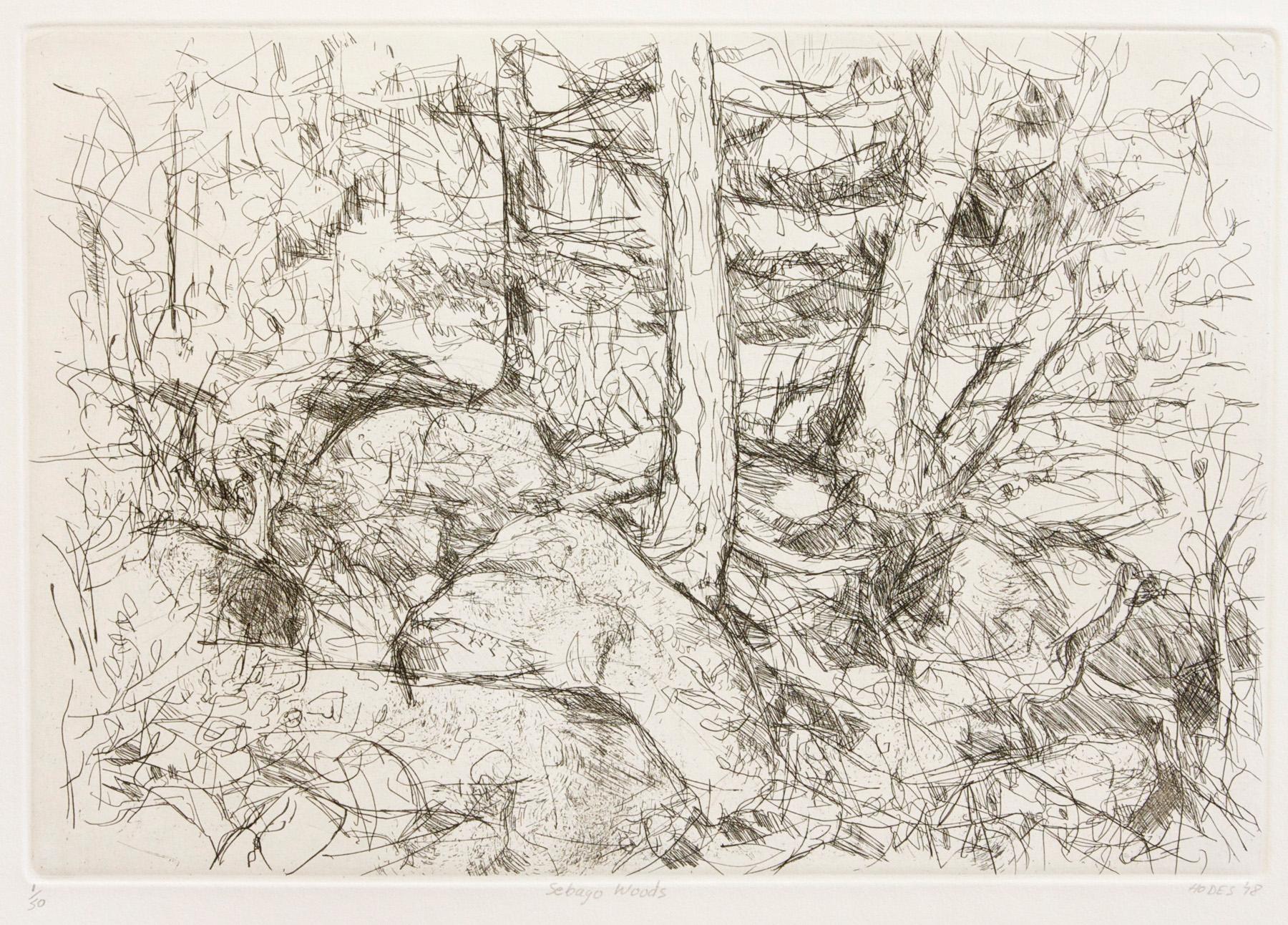 2093-Sebago Woods-18x26